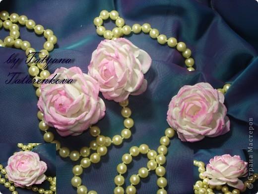 роза Николь фото 12