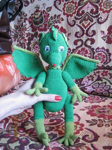 Дракошка - вид спереди. фото 3