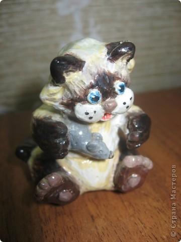 Подарок гастроэнтерологу. Мои Коты фото 7