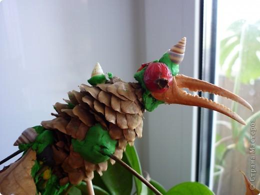 """Старший сын учится в 4 классе . На уроке  труда было задание сделать из природного материала . """"райскую птицу"""". Пока нес до дома,ее шикарный хвост поредел ,но зато клюв на месте))) фото 2"""