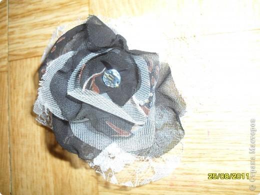 цветочки фото 5
