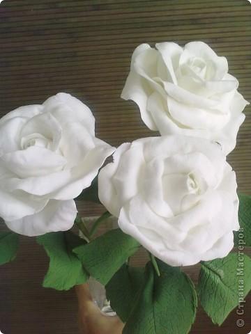 Розы в натуральную величину фото 1