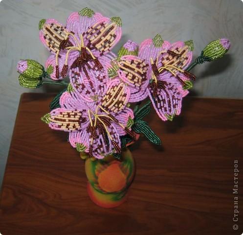 Альстромерии (Перуанские лилии)