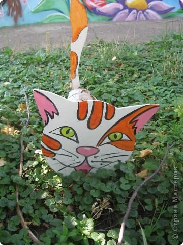 Озорные кошки. фото 2