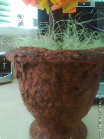 Здравствуйте! Это мое первое дерево. Завтра сын понесет в школу на выставку. Я очень надеюсь, что наше дерево понравится всему классу, а может и всей школе ))) фото 3