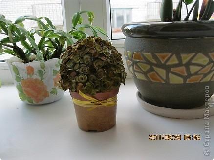 Это мое второе деревце, первое клеила на пластелин, просто пробовала, что получится фото 2