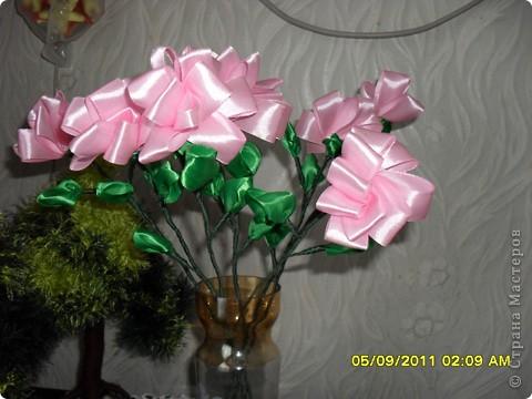 Мои цветы из атласных лент. фото 1