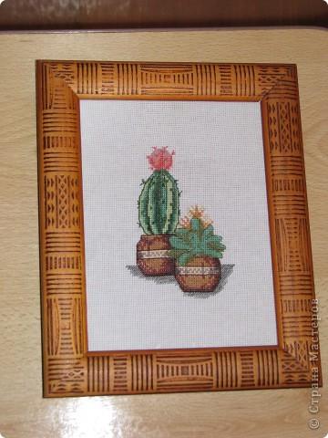Кактусы (вышивка крестиком) фото 1