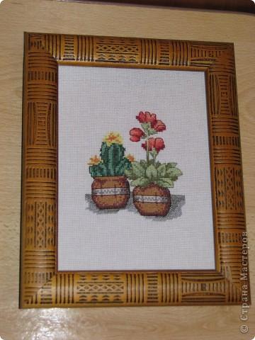 Кактусы (вышивка крестиком) фото 2