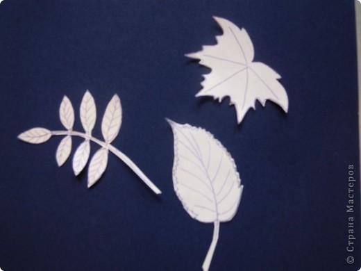 Панно сделано из кленовых листьев, проглаженных утюгом через бумагу. Цветы были заранее засушены как гербарий. Листочки, создающие рамку вырезаны из цветной бумаги- бархатной и простой. Фон картины нарисован акварелью. фото 2