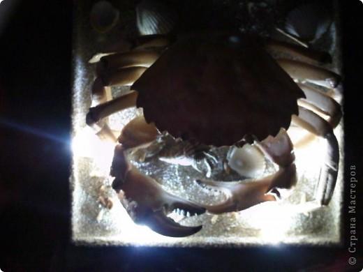 Крабик (внешнее освещение). фото 4