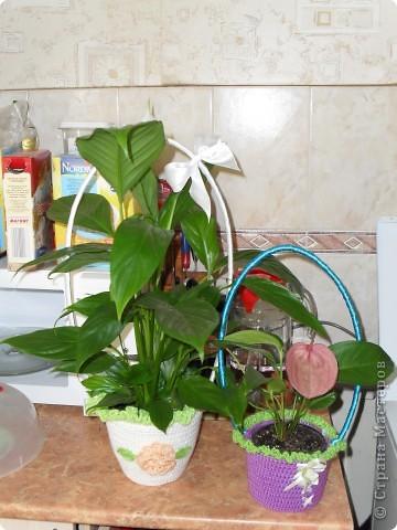 корзины для цветов и не только