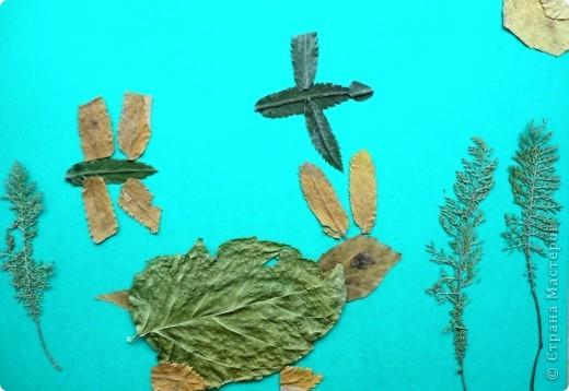 Продолжаю тему осенних листьев. В этот раз представляю работы второклассников. Зайчик Сергея Р. фото 1