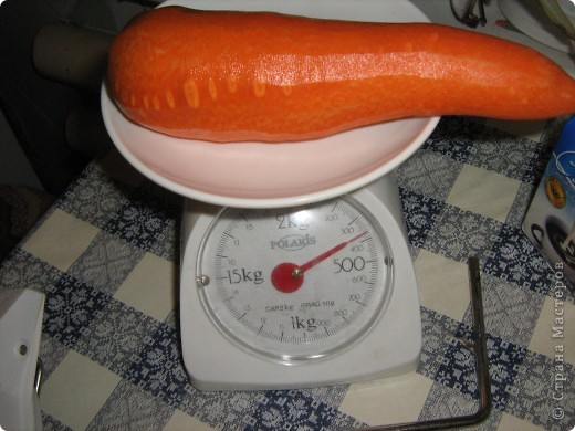 Начну с морковки и с небольшими комментариями. Такая морковка выросла уже в конце июля. Мы живем на севере и погода нас не балует. фото 3