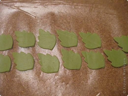 Веточка анемоны. Листья. фото 3