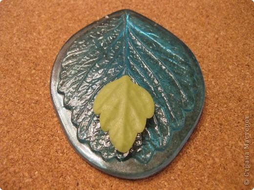 Веточка анемоны. Листья. фото 4
