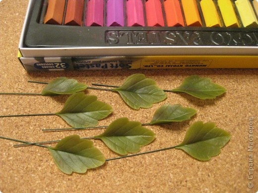 Веточка анемоны. Листья. фото 6