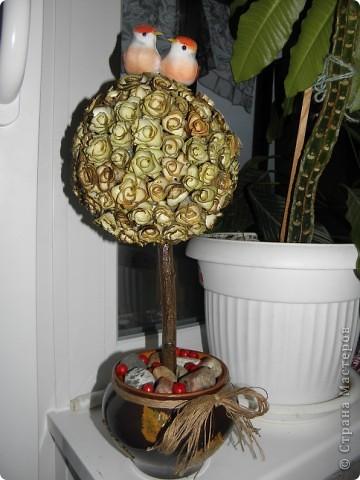 Вот и второе деревце...Опять удовольствия полный мешок!!!! фото 1