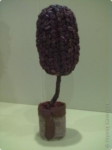 Вот такое дерево у меня получилось в виде кофейного зерна. Ко мне приезжали друзья из Голландии, и муж подруги (Голландец), увидев мои кофейные деревья по фото сказал сразу, а почему бы не сделать в форме зерна.вот наконец я сделала по его идее и решила, что оно будет мужское! фото 1