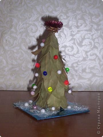 Венок на Рождество. Ветки кедра натуральные. фото 5