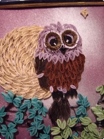 Очень мне нравятся совы. У них такие глаза....!!! Нет, даже не так. У них такие ГЛАЗА!!! Вот теперь правильно.  Очень мне захотелось иметь свою совушку. И вот она перед вами. фото 2