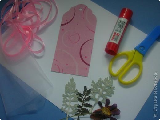 Всем привет! Хочу рассказать как сделать такие закладки с сухими цветами. фото 2