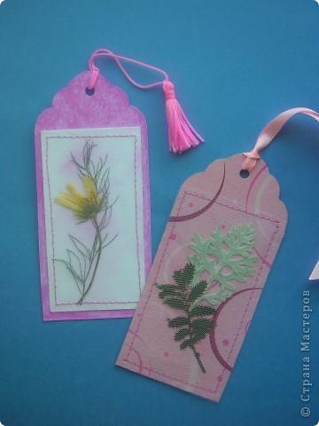 Всем привет! Хочу рассказать как сделать такие закладки с сухими цветами. фото 7