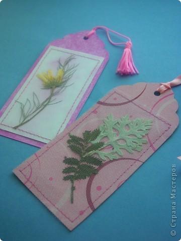 Всем привет! Хочу рассказать как сделать такие закладки с сухими цветами. фото 1