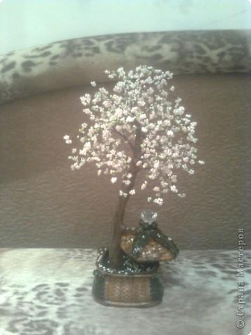 Когда увидела в первый раз бисерные деревья, решила, что у меня обязательно будет сакура! Просто заворожила своей нежностью. Вот. Теперь она у меня есть) фото 2