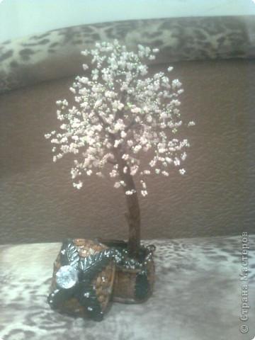 Когда увидела в первый раз бисерные деревья, решила, что у меня обязательно будет сакура! Просто заворожила своей нежностью. Вот. Теперь она у меня есть) фото 1