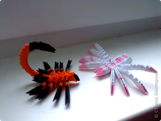 Скорпион ,паук и лебедь . фото 1