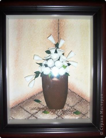Белые хризантемы фото 2