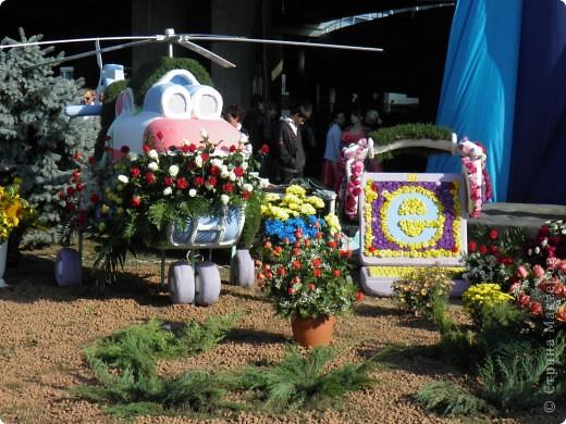 В сентябре у нас был день города. И, как обычно, состоялась выставка цветов. Вот какую красоту я там видела. Хочу с Вами поделиться))) Это Цветочная лошадка! фото 15
