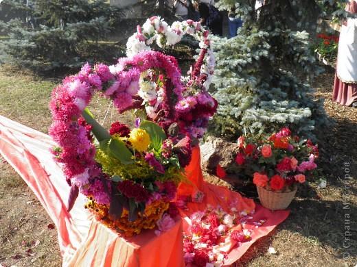В сентябре у нас был день города. И, как обычно, состоялась выставка цветов. Вот какую красоту я там видела. Хочу с Вами поделиться))) Это Цветочная лошадка! фото 8