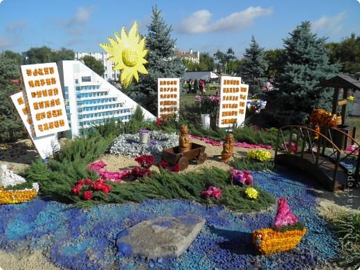 В сентябре у нас был день города. И, как обычно, состоялась выставка цветов. Вот какую красоту я там видела. Хочу с Вами поделиться))) Это Цветочная лошадка! фото 9