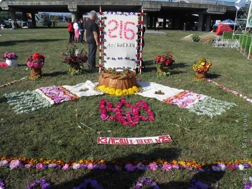 В сентябре у нас был день города. И, как обычно, состоялась выставка цветов. Вот какую красоту я там видела. Хочу с Вами поделиться))) Это Цветочная лошадка! фото 5