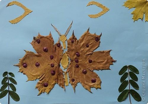 Осенняя бабочка.