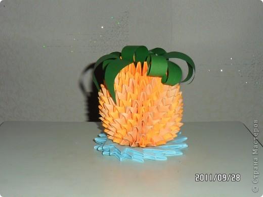 ананас фото 1