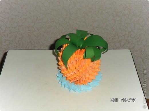 ананас фото 2