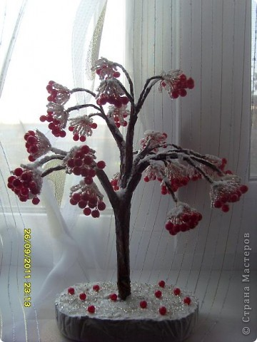 калина в снегу фото 2