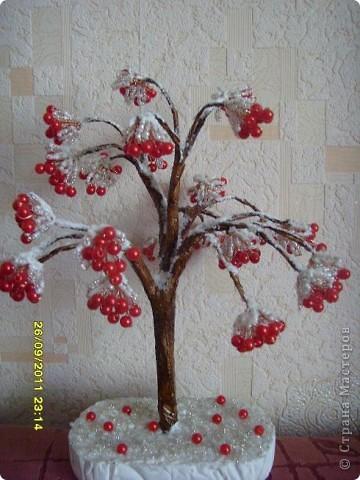 калина в снегу фото 1