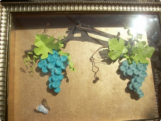 А это наш, настоящий виноград, вместе с моим)) фото 3