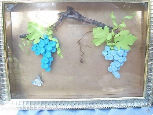 А это наш, настоящий виноград, вместе с моим)) фото 2