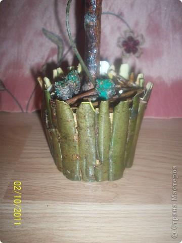 Деревце-кактус, потому что оочень колючее, сделала из расторопши ,  правда большие колючки посрезала, в некоторых местах она цветет) фото 2