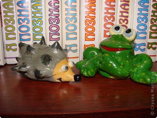 Лягушка фото 3
