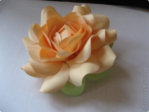 Бумажный цветочек фото 2