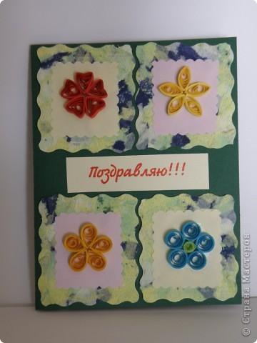 тюльпаны фото 7