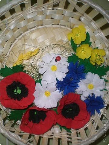 Полевые цветы (спасибо Лене Вишерской за МК!!!)