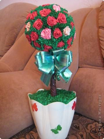 Подарки.Какие красавцы! Нравятся добезумия! фото 4