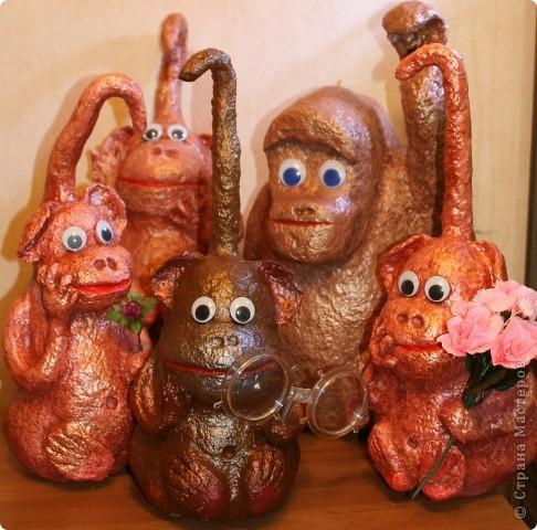 Мартышки, они  и в России мартышки. фото 1